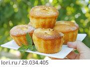 Купить «Muffins.», фото № 29034405, снято 23 июля 2018 г. (c) easy Fotostock / Фотобанк Лори