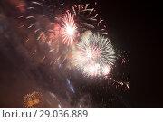 Купить «Celebratory colorful fireworks exploding in the skies.», фото № 29036889, снято 9 мая 2015 г. (c) Владимир Журавлев / Фотобанк Лори