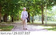 Купить «happy senior woman walking along summer park», видеоролик № 29037937, снято 21 августа 2018 г. (c) Syda Productions / Фотобанк Лори