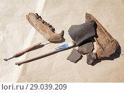 Купить «Натюрморт с археологическими инструментами и находками», фото № 29039209, снято 6 июля 2018 г. (c) Круглов Олег / Фотобанк Лори