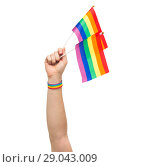 Купить «hand with gay pride rainbow flags and wristband», фото № 29043009, снято 2 ноября 2017 г. (c) Syda Productions / Фотобанк Лори