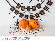 Купить «carved pumpkins with candies and halloween garland», фото № 29043289, снято 15 сентября 2017 г. (c) Syda Productions / Фотобанк Лори