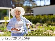 Купить «senior gardener with hedge trimmer at garden», фото № 29043569, снято 3 июня 2018 г. (c) Syda Productions / Фотобанк Лори