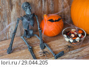 Купить «halloween pumpkins, skeleton and candies», фото № 29044205, снято 18 сентября 2017 г. (c) Syda Productions / Фотобанк Лори