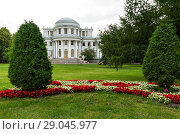Купить «Saint Petersburg. City park on Yelagin Island. Beautiful architecture of the western facade of the Yelaginsky Palace (Elaginsky or Elaginostrovsky Palace) attracts tourists, photographers and artists», фото № 29045977, снято 28 августа 2018 г. (c) Виктория Катьянова / Фотобанк Лори