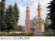Купить «Владикавказ, суннитская мечеть (мечеть Мухтарова), летний пейзаж.  Республика Северная Осетия — Алания (2018 год)», эксклюзивное фото № 29046089, снято 30 августа 2018 г. (c) Ирина Водяник / Фотобанк Лори