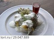 Купить «Plat de filets de harengs marines servi au restaurant U Szperlinga au bord du lac de Czorstyn, region des Pienines (Pieniny), Province Malopolska (Petite...», фото № 29047889, снято 21 июня 2018 г. (c) age Fotostock / Фотобанк Лори