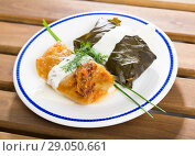 Купить «Cabbage and grape rolls in leaves at plate, dish of European cuisine», фото № 29050661, снято 21 сентября 2018 г. (c) Яков Филимонов / Фотобанк Лори