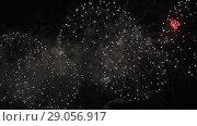 Купить «Beautiful colorful fireworks display for celebration on black background, New year holiday concept stock footage video», видеоролик № 29056917, снято 3 сентября 2018 г. (c) Юлия Машкова / Фотобанк Лори