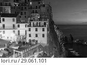 Купить «Night seascape with Manarola, Italy», фото № 29061101, снято 4 декабря 2017 г. (c) Яков Филимонов / Фотобанк Лори