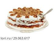 Купить «Delicious cake with apple and whipped cream filling», фото № 29063617, снято 18 февраля 2019 г. (c) Игорь Бородин / Фотобанк Лори