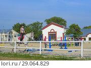 Купить «Конный центр на ВДНХ. Наездницы на лошадях.», фото № 29064829, снято 8 сентября 2018 г. (c) Ирина Носова / Фотобанк Лори