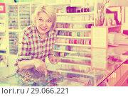 Купить «Woman in shop with sewing goods», фото № 29066221, снято 20 сентября 2018 г. (c) Яков Филимонов / Фотобанк Лори