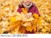 Купить «close up of girl with maple leaves at autumn park», фото № 29066853, снято 19 октября 2017 г. (c) Syda Productions / Фотобанк Лори