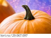 Купить «close up of pumpkin», фото № 29067097, снято 15 сентября 2017 г. (c) Syda Productions / Фотобанк Лори