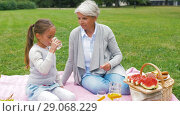 Купить «grandmother and granddaughter at picnic in park», видеоролик № 29068229, снято 24 августа 2018 г. (c) Syda Productions / Фотобанк Лори