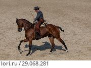 Купить «Испанский наездник на андалузской лошади из старинного города Кордовы скачет в конном манеже», фото № 29068281, снято 2 сентября 2018 г. (c) Николай Винокуров / Фотобанк Лори