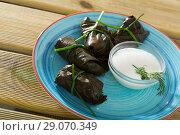 Купить «Grape rolls in leaves at plate with sour cream, dish of Bulgarian cuisine», фото № 29070349, снято 18 сентября 2018 г. (c) Яков Филимонов / Фотобанк Лори