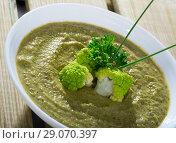 Cream soup of broccoli. Стоковое фото, фотограф Яков Филимонов / Фотобанк Лори