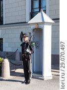 Купить «Королевская гвардия Норвегии. Гвардеец на посту у дворца. Осло, Норвегия», фото № 29070497, снято 3 июля 2018 г. (c) Кекяляйнен Андрей / Фотобанк Лори