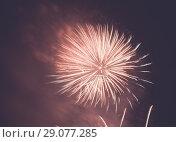 Купить «Pink firework show in dark sky», фото № 29077285, снято 22 июля 2017 г. (c) Яков Филимонов / Фотобанк Лори