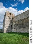 Купить «Талавская башня изборского кремля», фото № 29077693, снято 12 августа 2016 г. (c) Геннадий Соловьев / Фотобанк Лори