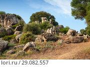 Купить «Summer landscape with rocks of Filitosa», фото № 29082557, снято 20 августа 2018 г. (c) EugeneSergeev / Фотобанк Лори