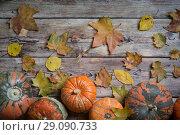 Купить «Orange pumpkins», фото № 29090733, снято 14 сентября 2018 г. (c) Типляшина Евгения / Фотобанк Лори