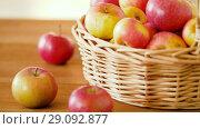 Купить «ripe apples in wicker basket on wooden table», видеоролик № 29092877, снято 7 сентября 2018 г. (c) Syda Productions / Фотобанк Лори
