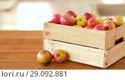 Купить «ripe apples in wooden box on table», видеоролик № 29092881, снято 7 сентября 2018 г. (c) Syda Productions / Фотобанк Лори