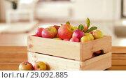 Купить «ripe apples in wooden box on table», видеоролик № 29092885, снято 7 сентября 2018 г. (c) Syda Productions / Фотобанк Лори
