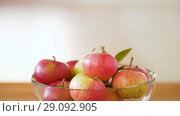 Купить «ripe apples in glass bowl on wooden table», видеоролик № 29092905, снято 7 сентября 2018 г. (c) Syda Productions / Фотобанк Лори