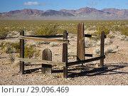 Купить «Grave, Bullfrog-Rhyolite Cemetery, Rhyolite Historic Site, Tonopah District Bureau of Land Management, Nevada.», фото № 29096469, снято 23 марта 2018 г. (c) age Fotostock / Фотобанк Лори