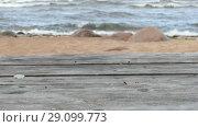 Купить «Empty Wooden Table Top on Sandy Beach Side», видеоролик № 29099773, снято 18 сентября 2018 г. (c) Ints VIkmanis / Фотобанк Лори