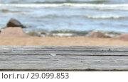 Купить «Empty Wooden Table Top on Sandy Beach Side», видеоролик № 29099853, снято 18 сентября 2018 г. (c) Ints VIkmanis / Фотобанк Лори