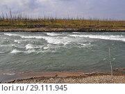 Купить «The rapid on the Putorana plateau», фото № 29111945, снято 16 августа 2015 г. (c) Сергей Дрозд / Фотобанк Лори