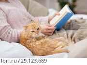 Купить «red cat and female owner reading book at home», фото № 29123689, снято 15 ноября 2017 г. (c) Syda Productions / Фотобанк Лори