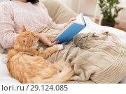 Купить «red cat and female owner reading book at home», фото № 29124085, снято 15 ноября 2017 г. (c) Syda Productions / Фотобанк Лори