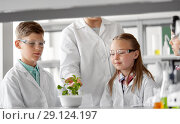 Купить «students and teacher with plant at biology class», фото № 29124197, снято 19 мая 2018 г. (c) Syda Productions / Фотобанк Лори