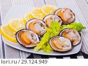 Купить «Close up of tasty raw dog cockle, lemon and greens at plate», фото № 29124949, снято 21 сентября 2019 г. (c) Яков Филимонов / Фотобанк Лори
