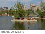 Купить «Домики для уток на Пресненском пруду на старой территории зоопарка. Пресненский район. Город Москва», эксклюзивное фото № 29126517, снято 13 мая 2015 г. (c) lana1501 / Фотобанк Лори