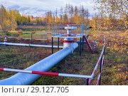 Купить «Нефтепровод высокого давления», фото № 29127705, снято 22 сентября 2018 г. (c) Икан Леонид / Фотобанк Лори