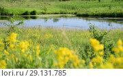 Купить «small plain lake In central part of Russia», видеоролик № 29131785, снято 22 июня 2018 г. (c) Володина Ольга / Фотобанк Лори