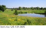 Купить «small plain lake In central part of Russia», видеоролик № 29131805, снято 22 июня 2018 г. (c) Володина Ольга / Фотобанк Лори