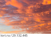 Купить «Background with the texture of clouds at sunset. Heavenly landscape. Beautiful morning sky painted in bright red and orange colors», фото № 29132445, снято 25 сентября 2018 г. (c) Светлана Евграфова / Фотобанк Лори