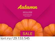 Купить «Autumn sale bright pink background with pumpkin», иллюстрация № 29133545 (c) Шильникова Дарья / Фотобанк Лори