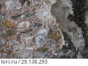 Купить «Old stone wal texture», фото № 29138293, снято 19 октября 2018 г. (c) Яков Филимонов / Фотобанк Лори