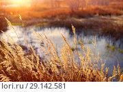 Купить «Осенний пейзаж», фото № 29142581, снято 27 сентября 2018 г. (c) Икан Леонид / Фотобанк Лори