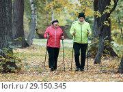 Купить «Two elderly women are involved in Scandinavian walking in the park in off-road», фото № 29150345, снято 30 сентября 2018 г. (c) Константин Шишкин / Фотобанк Лори