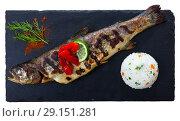 Купить «Tasty baked whole trout with rice, served with lemon and greens at plate», фото № 29151281, снято 26 июня 2019 г. (c) Яков Филимонов / Фотобанк Лори